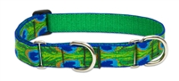 "LupinePet 1"" Tail Feathers 19-27"" Martingale Training Collar"