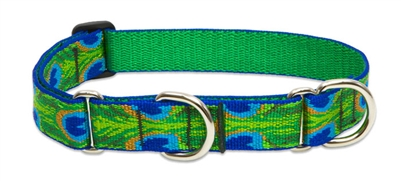 "Lupine 1"" Tail Feathers 19-27"" Martingale Training Collar"