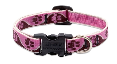 "Lupine 1/2"" Tickled Pink 8-12"" Adjustable Collar"