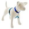 "Lupine Turtle Reef 16-26"" No-Pull Harness - Medium Dog"