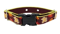 "Lupine Retired Oak & Maple 1"" UCC Collar (R-22) - Size 12-17 (Small)"