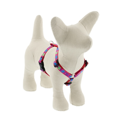 "Lupine 1/2"" Wing It 12-20"" Roman Harness"