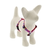 "Lupine 1/2"" Wing It 9-14"" Roman Harness"