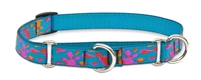 "Lupine 3/4"" Wet Paint! 10-14"" Martingale Training Collar"
