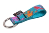 Lupine Wet Paint! Collar Buddy - Medium Dog