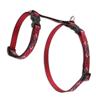 "Retired Lupine 1/2"" Wild West 9-14"" H-Style Cat Harness"