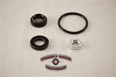 Arctic Cat DVX400 Seal Kit (2004-2008) | Schmidty Racing