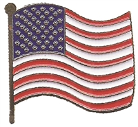 0475-6836 - U.S. wavy flag hat pin