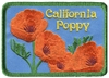 California Poppy souvenir embroidered patch