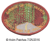 1575 - HIBISCUS HAWAII STATE FLOWER souvenir embroidered patch, HI