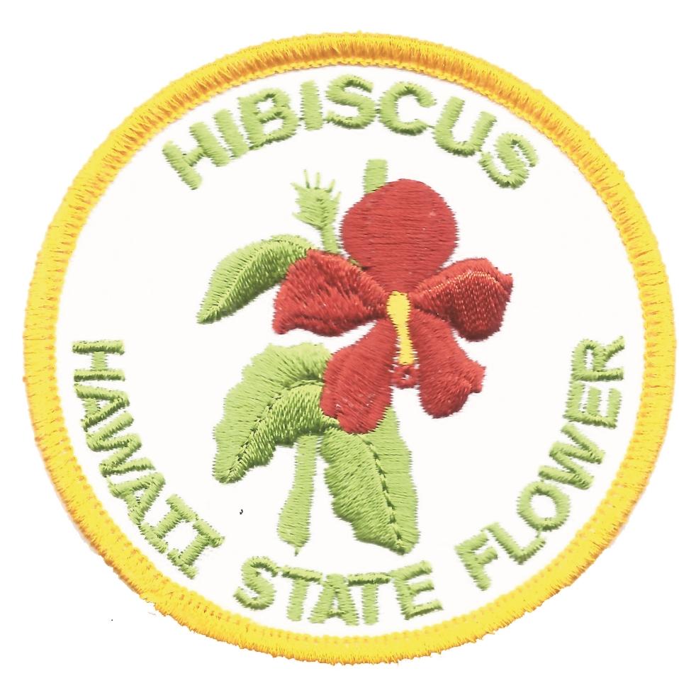 1575 hibiscus hawaii state flower souvenir embroidered patch hi izmirmasajfo