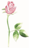 pink rose on stem embroidered iron-on patch