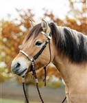 Barefoot Acorn Bridle 2-in-1