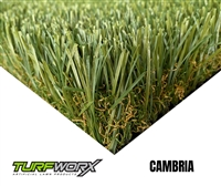 Cambria by TURFWORX