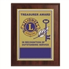 Plaque Treasure Appreciation Award - 7 x 9 inch