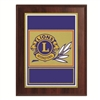 Plaque All Purpose Plaque - 7 x 9 inch