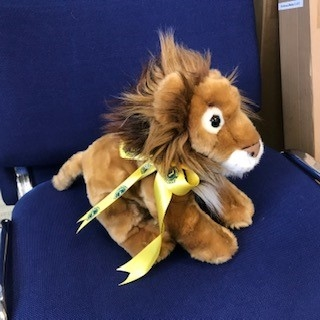 Medium Plush Toy Lion