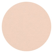 Pro Finish Compact - Dual Active Powder Foundation - Honey