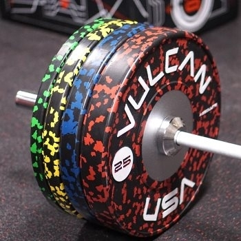Kilogram Training Bumper Plates -  Vulcan Strength