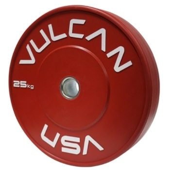Training Bumper Plates  Pair - 25 kg