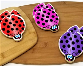 Lady Bug Spring Time Sugar Cookies
