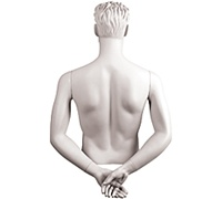 Male Mannequin Arms: Hands Behind Back, White