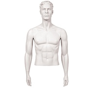 Male Mannequin Arms: Arms by Side, White