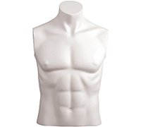 Male Mannequin Bust: Headless, Size 40, White