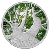 2013 $20 Canadian Maple Canopy - Spring (#1) Fine Silver (No Tax)