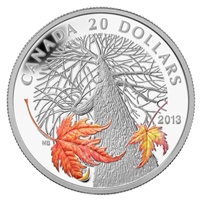 2013 $20 Canadian Maple Canopy - Autumn (#2) Fine Silver (No Tax)