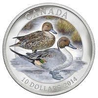 2014 Canada $10 Pintail Duck Fine Silver Coin (Tax Exempt)