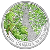 RDC 2014 $20 Canadian Maple Canopy - Spring Splendour Fine Silver (No Tax) Impaired