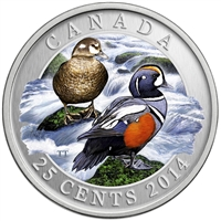2014 25-cent Ducks of Canada - Harlequin Duck Coloured Cupronickel Coin