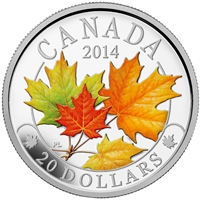 2014 Canada $20 Majestic Maple Leaves with Colour Fine Silver (No Tax)