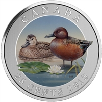 2015 25-cent Ducks of Canada - Cinnamon Teal Coloured Cupronickel Coin