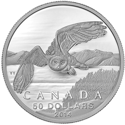 2014 Canada $50 Snowy Owl ($50 for $50 #2) Fine Silver (No Tax)