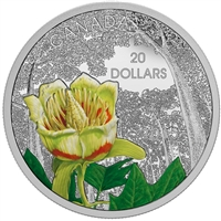 2015 $20 Forests of Canada - Carolinian Tulip Tree (No Tax)