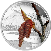 2015 $20 Forests of Canada - Boreal Balsam Poplar Fine Silver (No Tax)