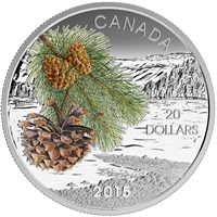 2015 $20 Forests of Canada - Coast Shore Pine Fine Silver (No Tax)