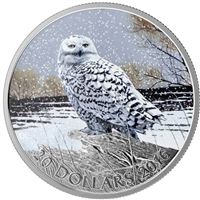 2016 Canada $20 Snowy Owl Fine Silver coin (TAX Exempt)