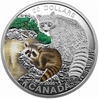 RDC 2016 Canada $20 Baby Animals - Baby Raccoon Fine Silver (No Tax) Scratched Capsule