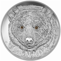 2016 Canada $250 In The Eyes of the Spirit Bear Fine Silver (No Tax)