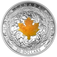 2016 Canada $20 Majestic Maple Leaves with Drusy Stone Silver Coin