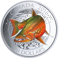 RDC 2016 $20 Canadian Salmonids - Arctic Char Fine Silver (No Tax) Impaired