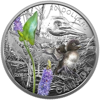 2016 Canada $20 Baby Animals - Common Loon Fine Silver (No Tax)