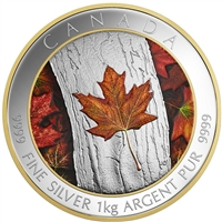 2016 Canada $250 Maple Leaf Forever Fine Silver (No Tax) 153158. Missing outer sleeve.