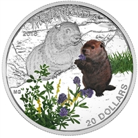 2016 Canada $20 Baby Animals - The Woodchuck Fine Silver (No Tax)