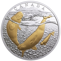 2018 Canada $20 From Sea to Sea - Arctic Beluga Whale Gold-Plated Silver (No Tax)