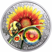 2017 Canada $20 Mother Nature's Magnification - Beauty Under The Sun (No Tax)