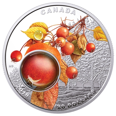 2018 Canada $20 Mother Nature's Magnification - Morning Dew Silver Coin